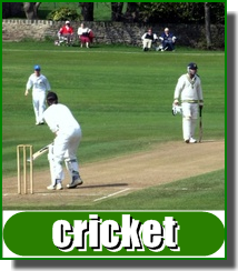 Performance Cricket grounds call Greenmaster 0800 027 6561