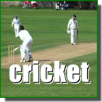 Cricket Ground Maintenance Services