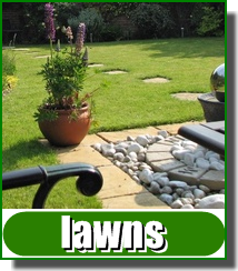 Perfect lawns from Greenmaster 0800 027 6561